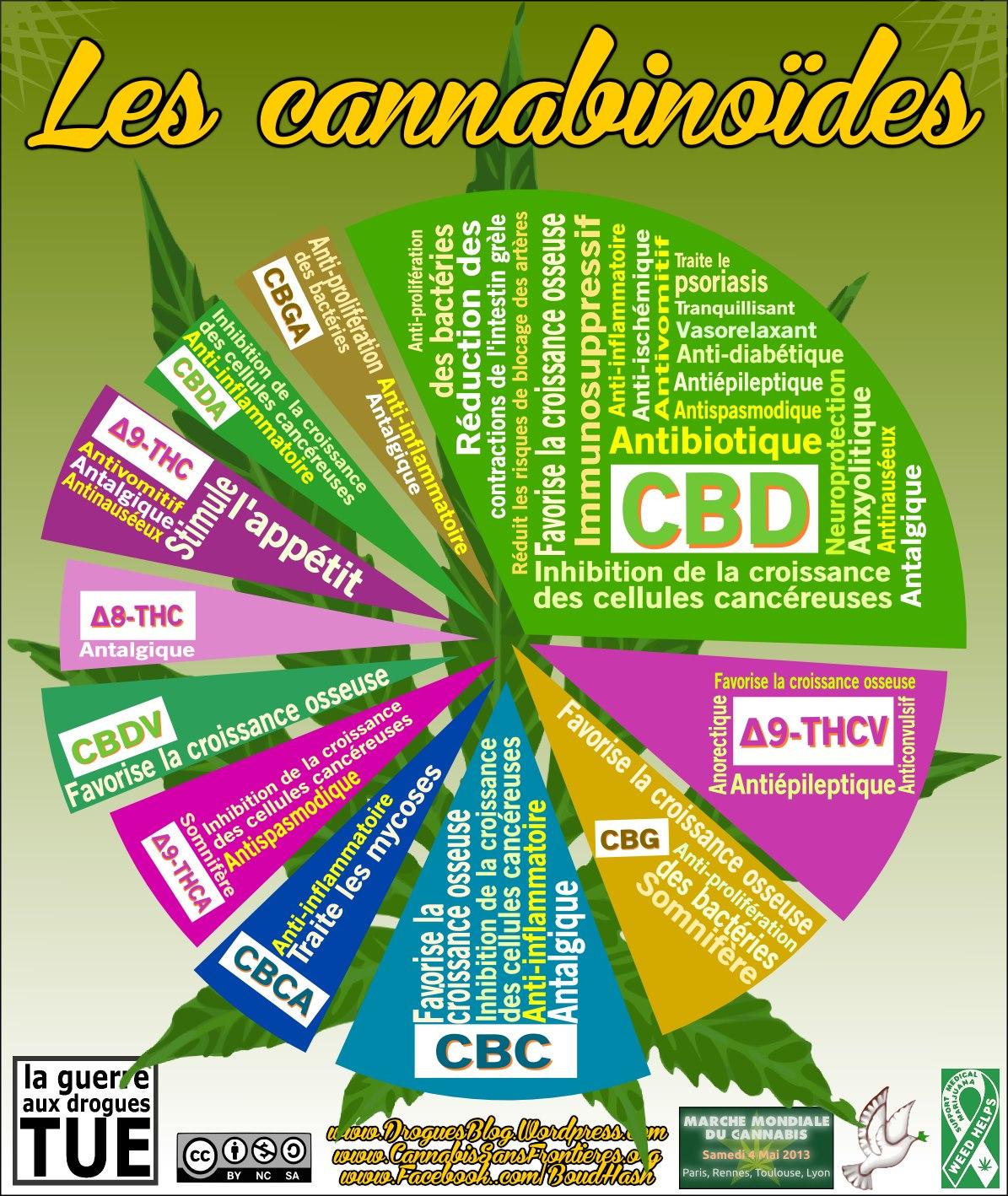 Les propriétés médicinales des cannabinoides